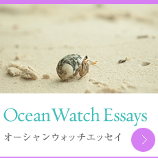 Ocean Watch Essays